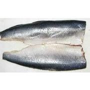 Herring Whole Salted